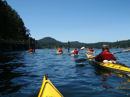 Pender Island Kayak Adventures