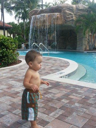 Naples Bay Resort: My lil man at pool Sept 2013