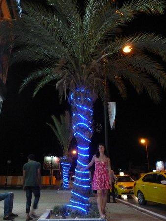 Hotel Diar Lemdina : вечерний променант+желтое такси