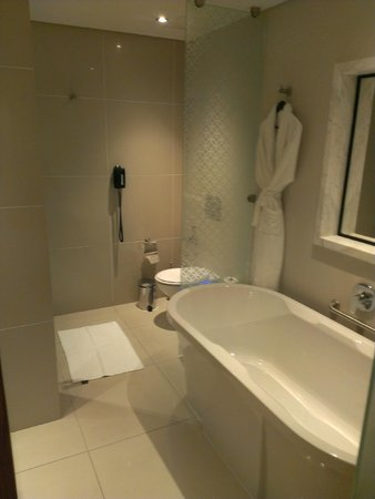 Hilton Cape Town City Centre : bagno