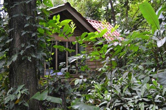 Arenal Oasis Eco Lodge & Wildlife Refuge: lodge