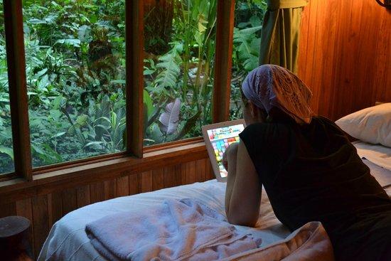 Arenal Oasis Eco Lodge & Wildlife Refuge: vue sur la jungle