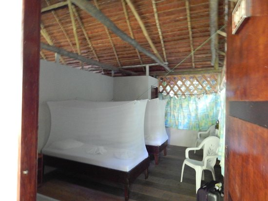 Amazon Explorama Lodges: Thatched roof of room