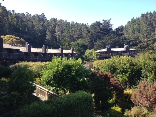 Stanford Inn by the Sea : View of rooms from restaurant
