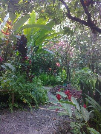 Rendezvous Resort: The Botanical Gardens