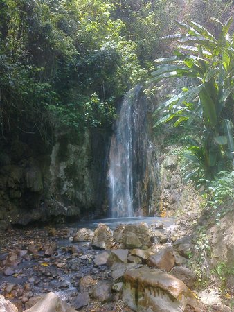 Rendezvous Resort: Waterfalls at the Botanical Gardens