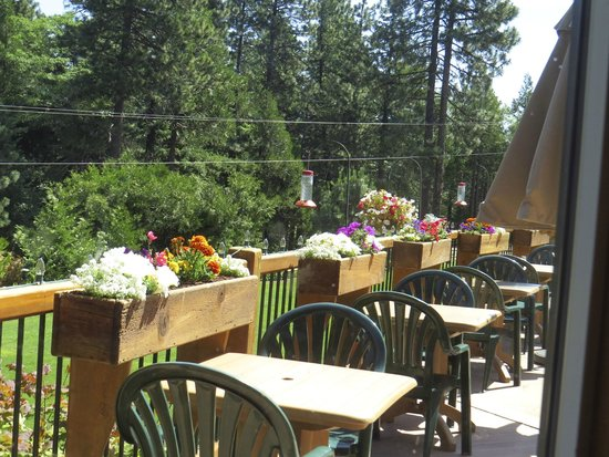 Callahan's Mountain Lodge Restaurant : Outdoor Dining offers up close views of Hummingbirds while enjoying a meal