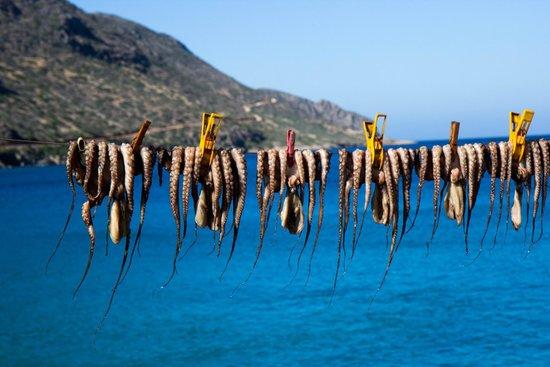 Elounda Island Villas: Greece colors