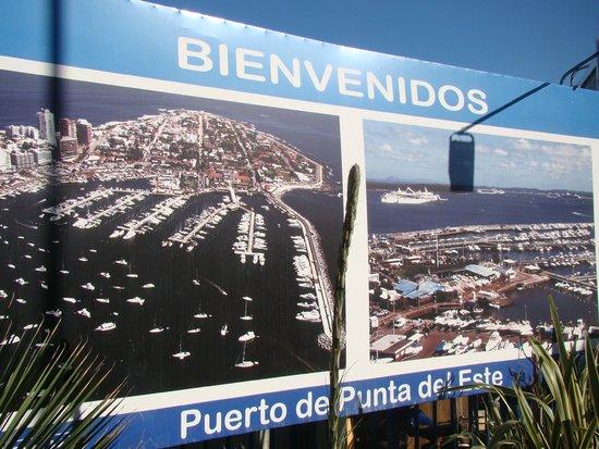 Hotel Castilla: Placa de Punta Del Leste