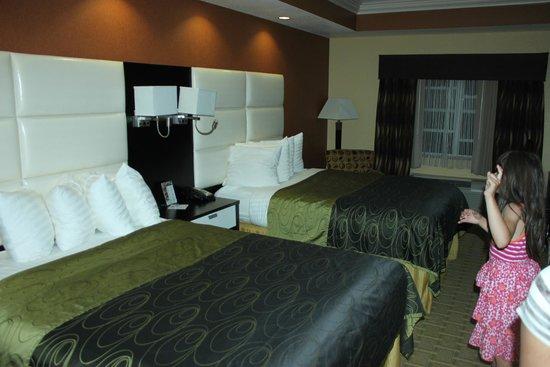 Best Western Plus JFK Inn & Suites: Room