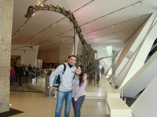 Royal Ontario Museum (ROM): Royal Ontario Museum, Toronto, CA