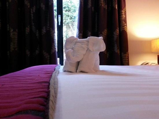 Ballyrobin Country Lodge: Our room host.
