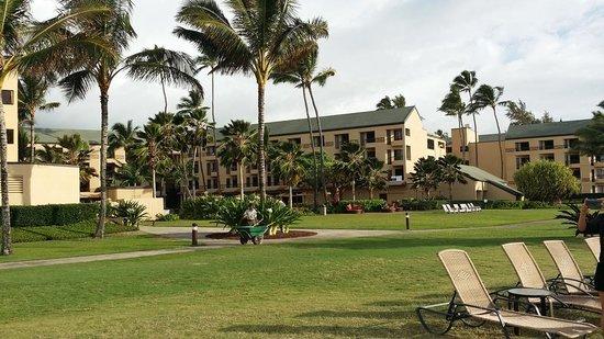 Courtyard Kaua'i at Coconut Beach: Grounds