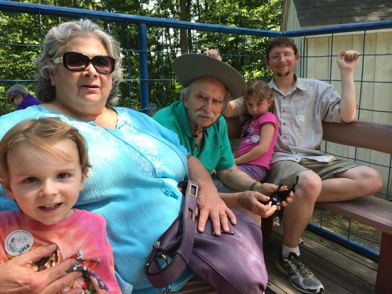 Land of Little Horses : On the handicapped accessible wagon ride