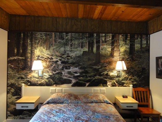 Motel Trees: Nice decor
