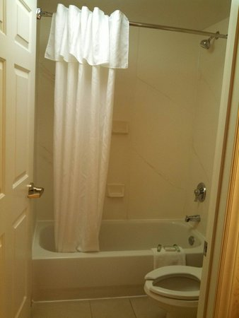 Homewood Suites by Hilton Raleigh Crabtree Valley : Bathroom area was clean