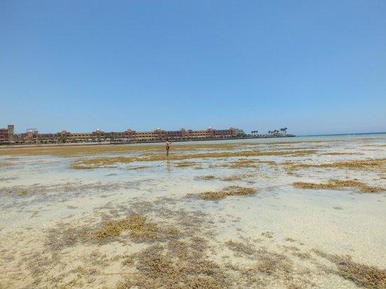 Arabia Azur Resort : odpływ