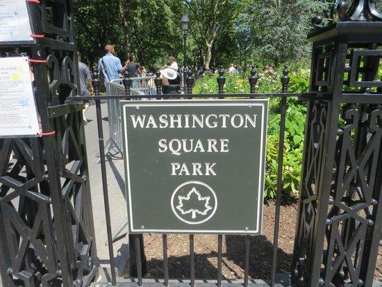 Real New York Tours: Washington Square Park