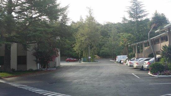 Los Gatos Lodge : grounds