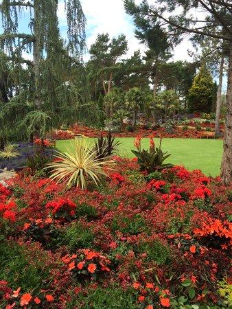 Flor og Fjære: blomsterprakt