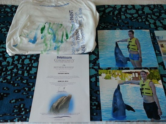 Dolphinaris Cancun: Trainer for a day experience