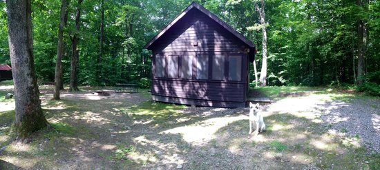 Chenango Valley State Park Campground: Cabin 13