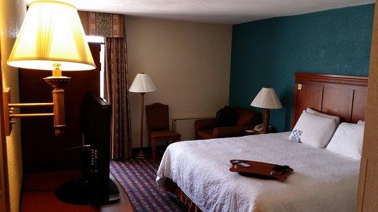 Hampton Inn Dallas North / I-35 East At Walnut Hill: Room