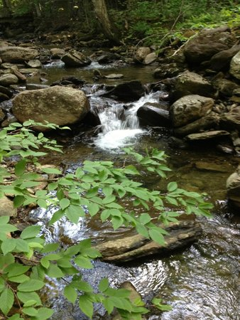 Stowe Mountain Lodge : Property Nature Walk through Fairy Glen...