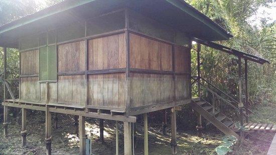 Amazon Planet: our bungalow