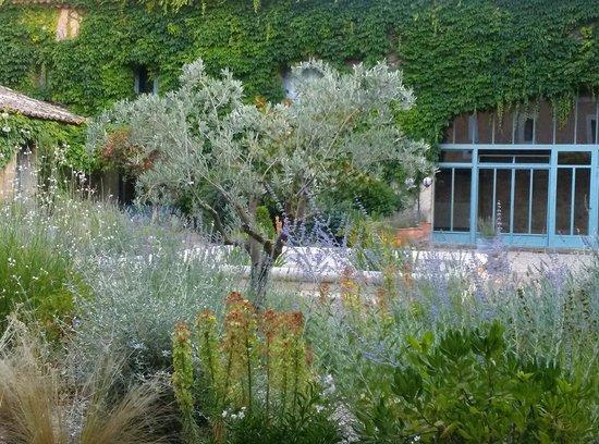 Le Mas des Oules: courtyard