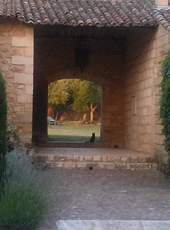 Le Mas des Oules: view from courtyard into the yard