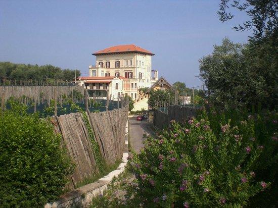 Villa Angelina: La Villa ed i giardini