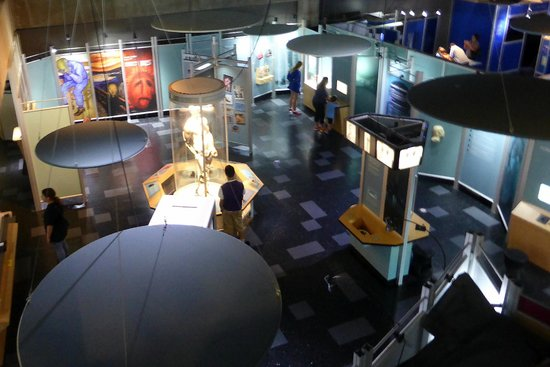 """Museum of Science and Industry: """"Amazing You"""" Exhibit"""