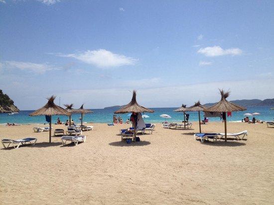 Grupotel Cala San Vicente: La spiaggia dell'hotel