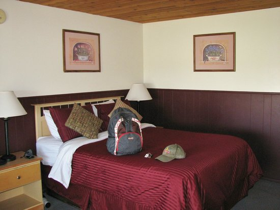 Yosemite Gateway Motel: one very comfortable queen