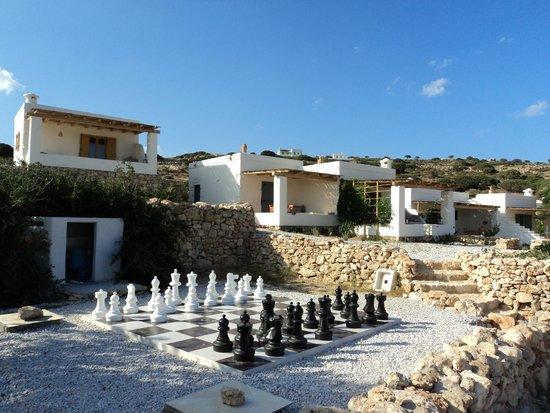 Pambelos Lodge: I wish I knew good chess....