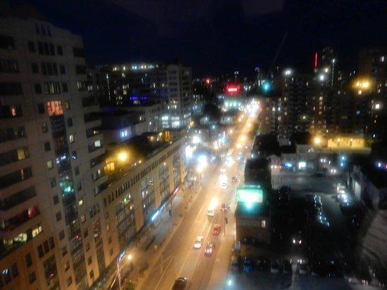Bond Place Hotel : Vista de mi Habitacion