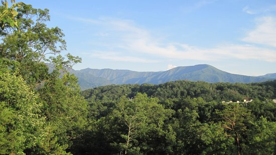 The Lodge at Buckberry Creek: Our view