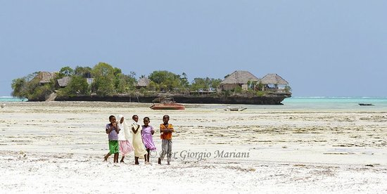 Pongwe Bay Resort: Pongwe Bay - Low tide and childrens