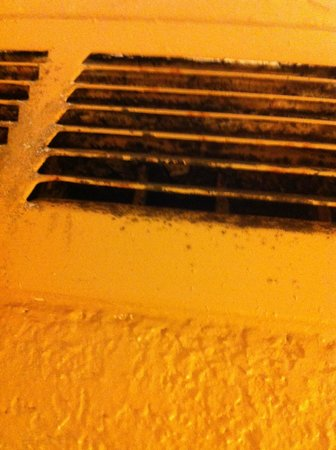 Hilton St. Louis Airport: Black mold coming out from main air vents