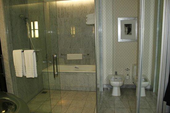 Park Hyatt Mendoza : Banheiro