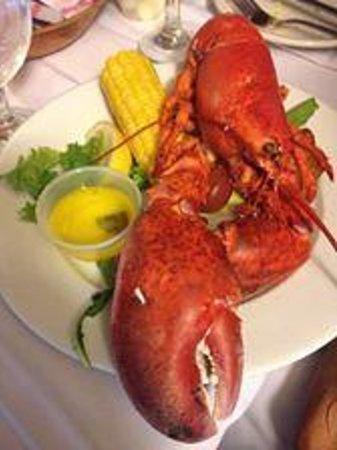 Wonderful Kitchen 305: Lobster Fest!