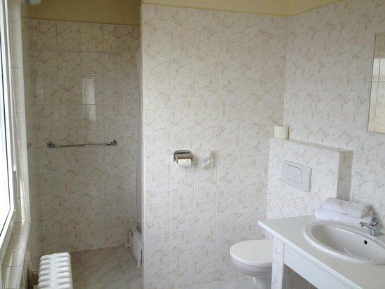 TOP HOTEL Praha: Bathroom