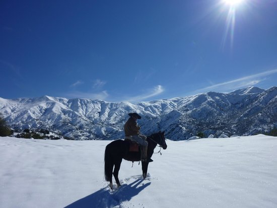 Horse Riding Chile Day Tours: Our Arriero at the top.