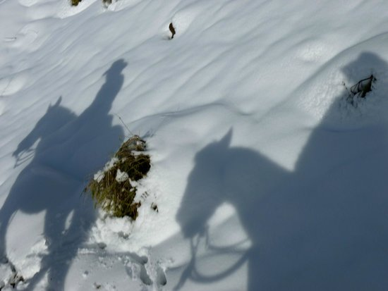 Horse Riding Chile: Very lucky to have had this much snow the day before
