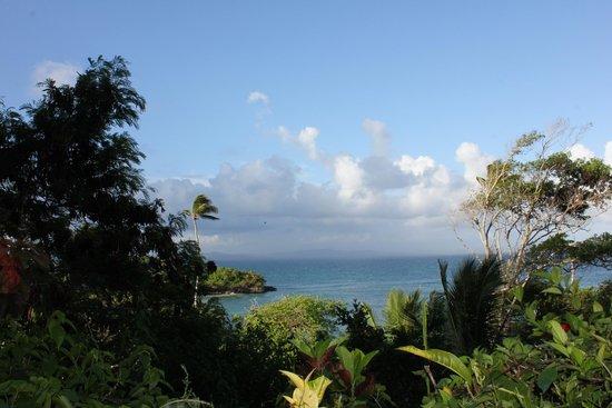 Luxury Bahia Principe Cayo Levantado Don Pablo Collection: View from stairs