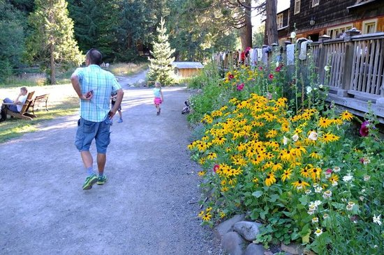 Breitenbush Hot Springs Resort Cabins: flower bed next to the main lodge