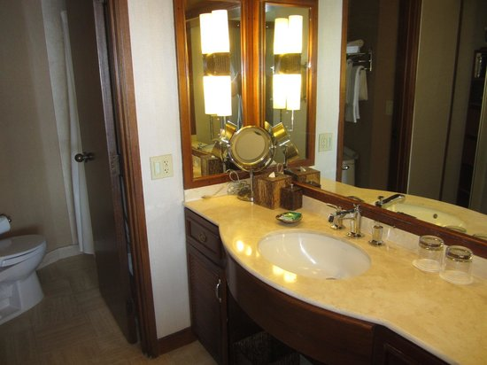 Hyatt Regency Maui Resort and Spa: airplane size bathroom