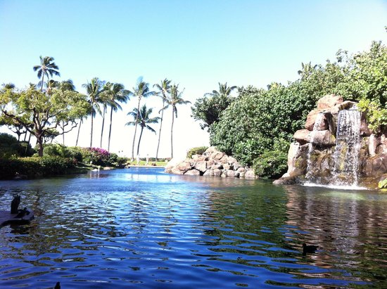 Hyatt Regency Maui Resort and Spa: view in swan court restaurant