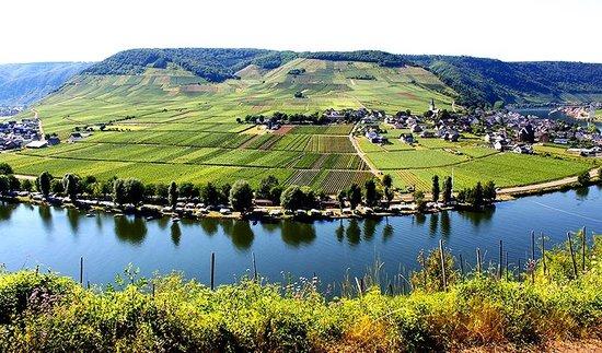 Hotel Haus Lipmann: The serene Mosel River